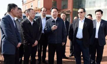 """大件运输:运输部长李小鹏在防城港市调研时强调抓住""""一带一路""""建设机遇"""